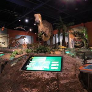 <div class='photo-title'>Dinosaur Gallery</div><div class='photo-desc'></div>