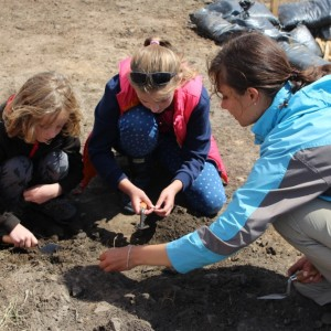 <div class='photo-title'></div><div class='photo-desc'>Learning how to dig and what to look out for</div>