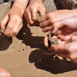 <div class='photo-title'></div><div class='photo-desc'>Separating the mud </div>