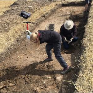 <div class='photo-title'>Using a mattock at Elmswell Farm</div><div class='photo-desc'></div>