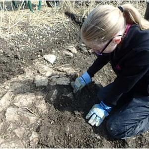 <div class='photo-title'>Rosie gets digging at Elmswell Farm</div><div class='photo-desc'></div>