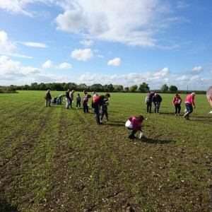 <div class='photo-title'>A great sunny day for fieldwalking!</div><div class='photo-desc'></div>