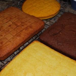 Make a stratigraphy cake