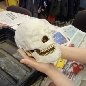 <div class='photo-title'>Our facial reconstruction...</div><div class='photo-desc'>To be completed in our February session; watch this space!</div>