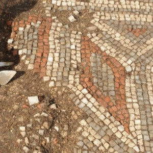 Chedworth Roman Villa, Gloucestershire: Re-discovering the past at the Big Dig 2018